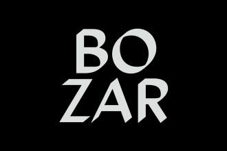 BOZAR Paleis voor Schone Kunsten – Brussels